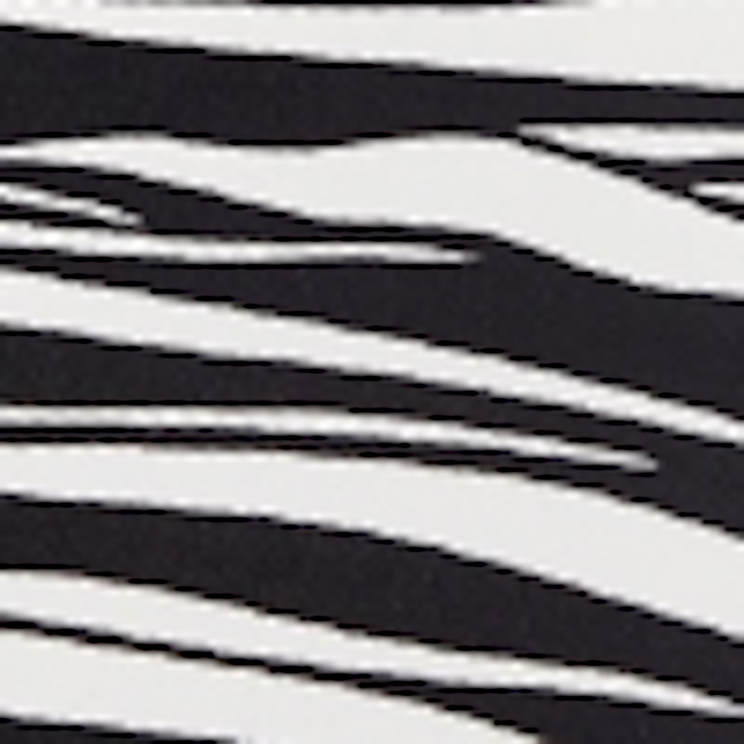 color-black-zebra